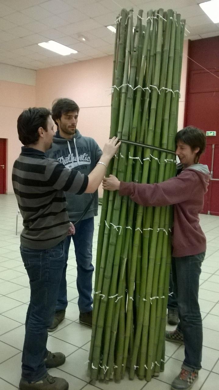 C'est lourd quand c'est vert le bambou, mais quelle solidité !