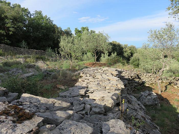 Beaucoup de pierres pour retenir quelques arpents de terre cultivable