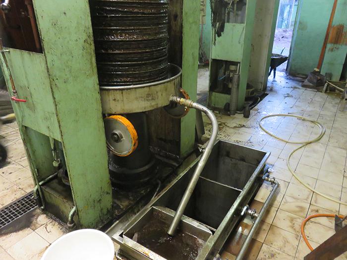 La presse écrase fortement la pâte  et extrait huile et margines