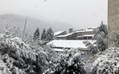 Première neige de l'année